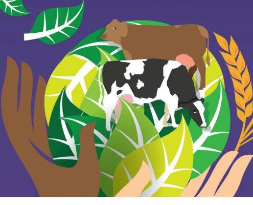 Imagen que ilustra la convocatoria del encuentro de Fademur en Mérida con ocasión del día internaciona de la mujer rural. Imagen: Fademur.