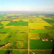 Paisaje agrícola, cultivos. Imagen: Dave Dyet / FreeImages