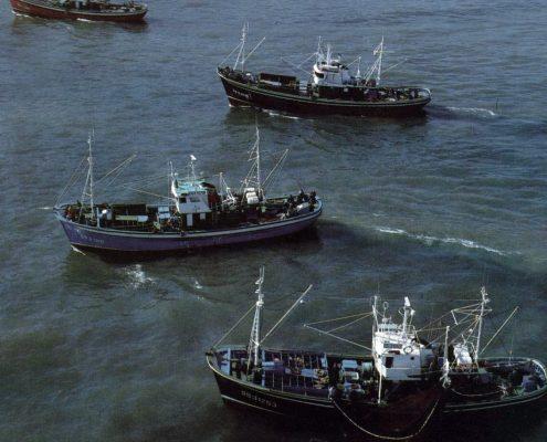 Imagen de pesqueros. Foto: MAGRAMA