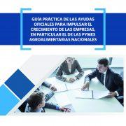guiaayudaspymes_tcm7-412729_noticia