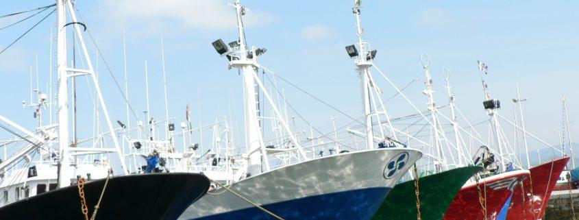 pesqueros-en-el-puerto-1188920-1600x1200