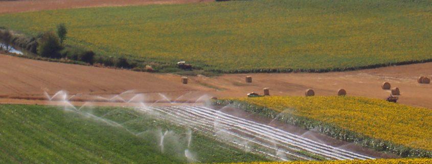 irrigation-1259217