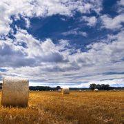 landscape-1363646-639x424