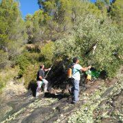 161129_viaje DO Sierra de Segura