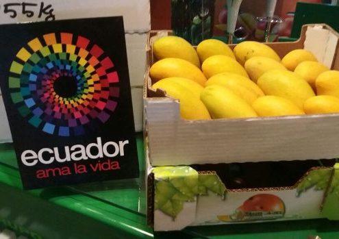 161223_mango ecuatoriano1
