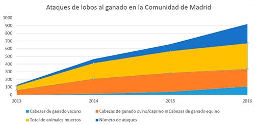 170315_grafico-ataques-lobos-Madrid_2