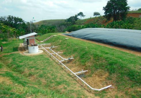 Gestión integral de la materia orgánica de una granja porcícola para la producción de energía renovable en el valle del Cauca, Colombia.
