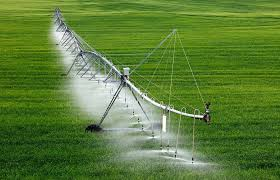 170322_entrevista Día Mundial del agua_recurso