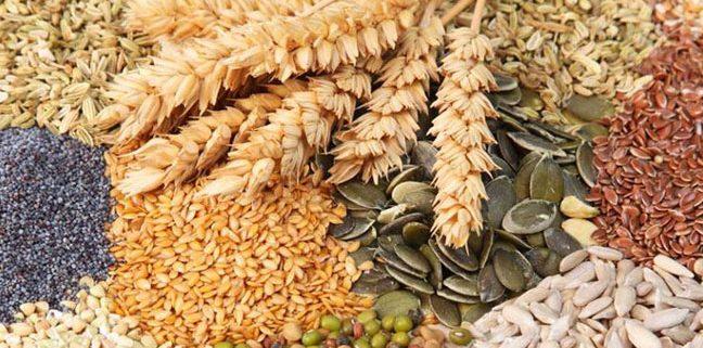 170419_producción de cereales en Argentina