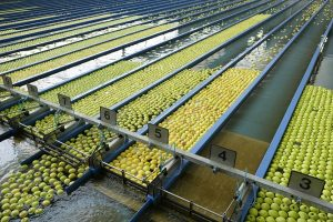 Almacenes de manzanas Val Venosta.