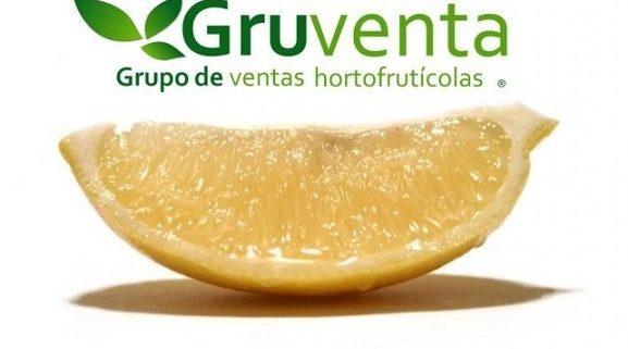 170523_Limones Gruventa