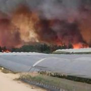 170626_incendio Doñana