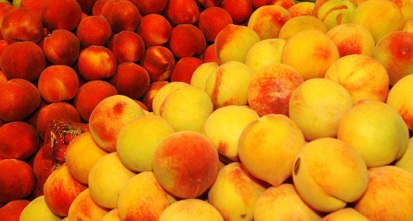 170809_fruta de hueso