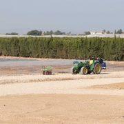 170829_Fecoam_parcela de cultivo Murcia