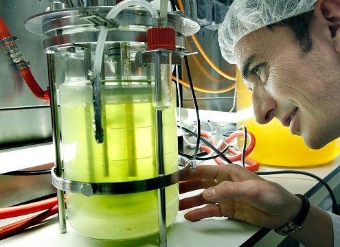 171110_consorcio lucha contra plagas olivar