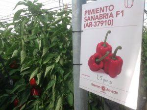 171206_Ramiro Arnedo