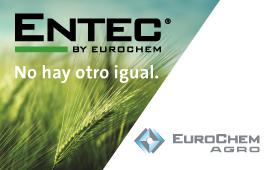 Banner ENTEC 2018 ESP
