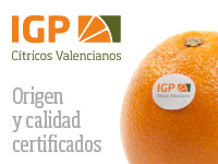 IGP CITRICOS VAL ENG 18-19