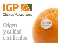IGP CITRICOS VAL 18-19 ESP