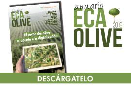 REVISTA ECA OLIVE 2019
