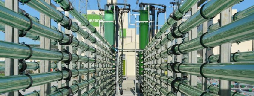 algaenergy