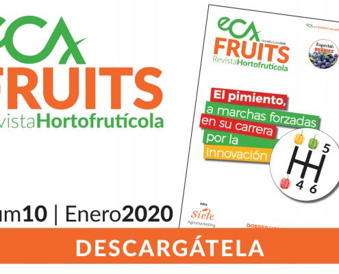 eCA FRUITS