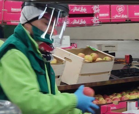 Centrales frutícolas