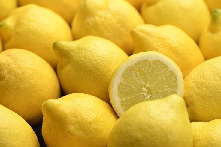 AILIMPO publica el manual para gestión ecológica de plagas en limón y pomelo - EcomercioAgrario
