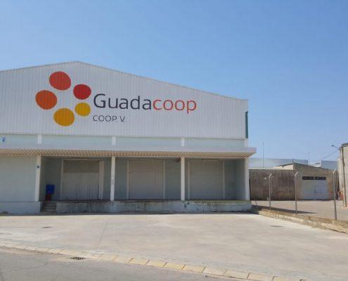Guadacoop